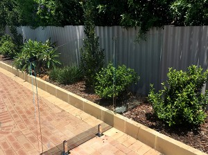 Gr8Glass_Pool_Fencing_165